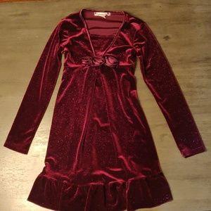 Beautiful  Dark Purple Sparkle Velvet Dress